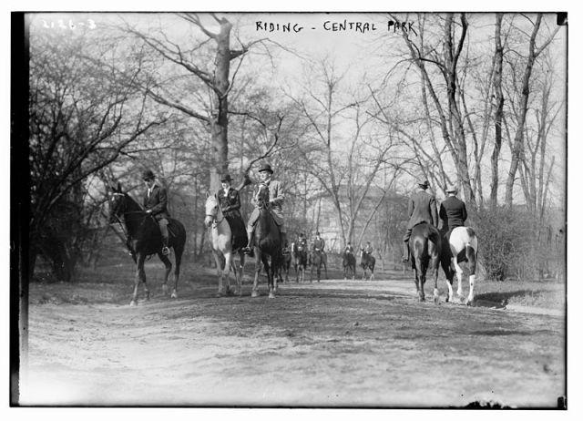 horsesCENTRALPARK