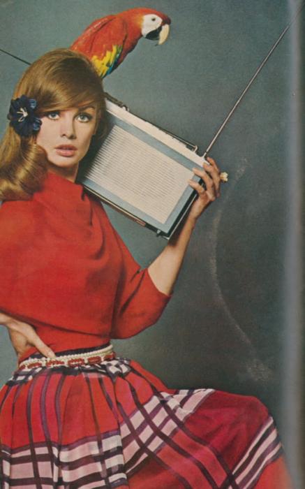 transistorradioLAKEAFFECTS