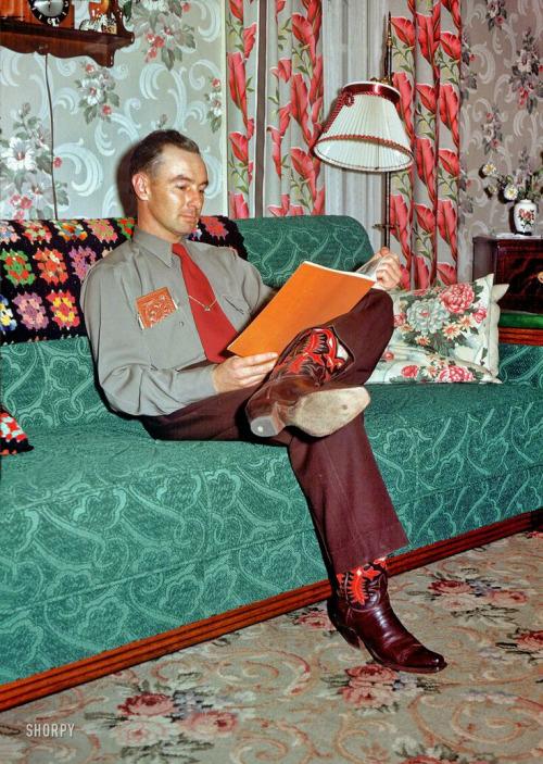 DANISMdomesticpartner1952NELSONCARPENTER