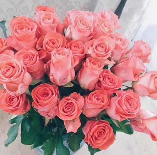 valentinesdaytumblr_ofdrbocqux1qzedd1o1_500